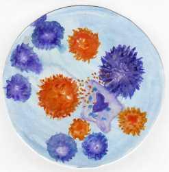 T-lyphocyte099